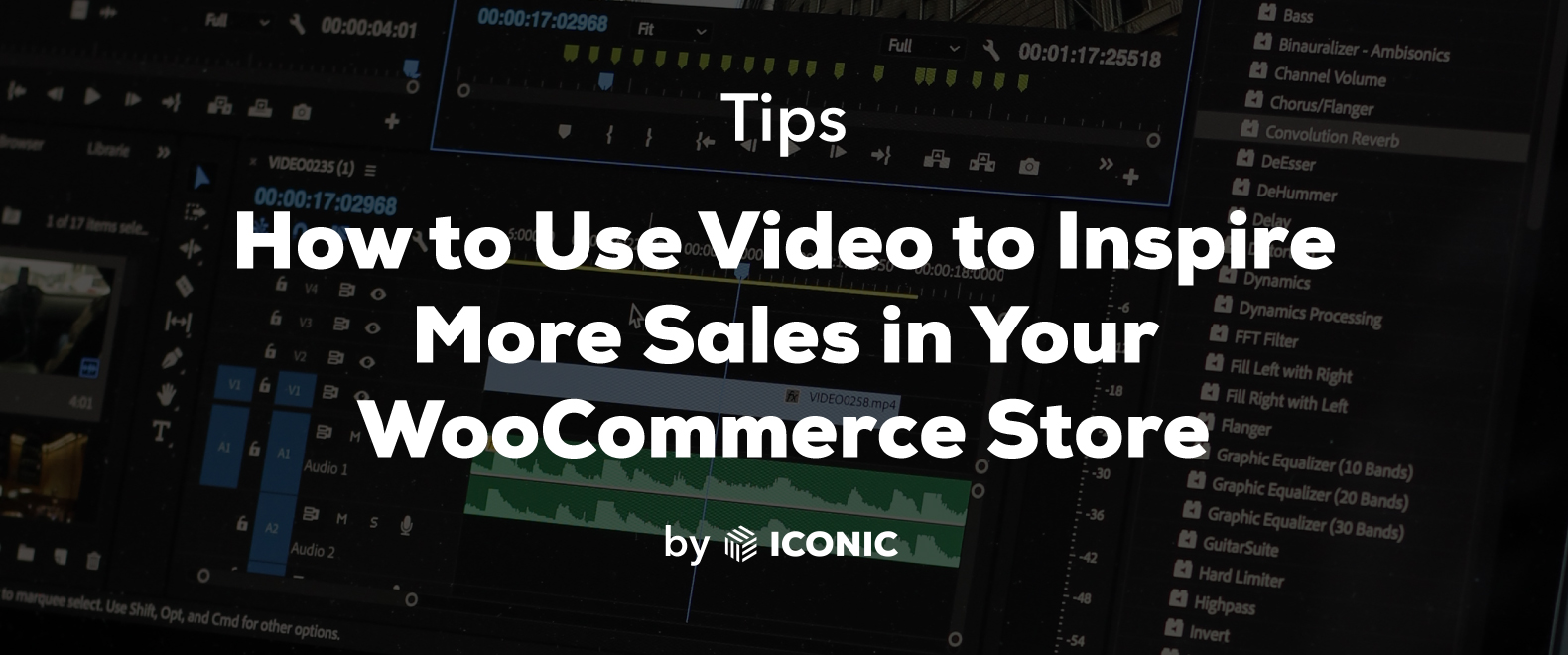 WooCommerce video