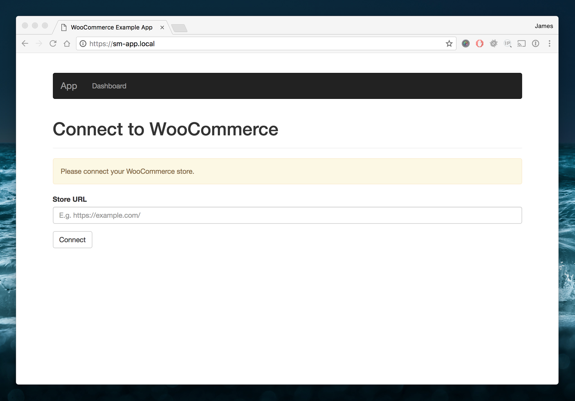 WooCommerce connect to the API form
