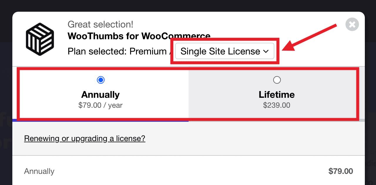 choose license type